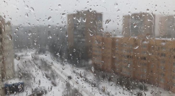 Похолодание: начало апреля в Рязани будет зябким