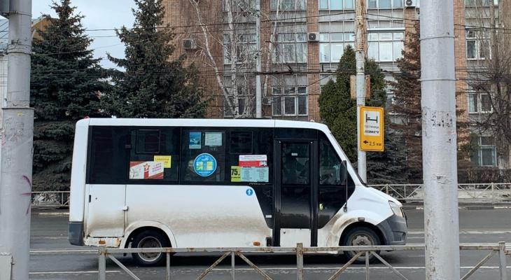 Новостройка есть, а маршруток нет. Где в Рязани не хватает общественного транспорта?