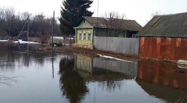Отделались малой кровью: в Сасовском районе затопило дворы