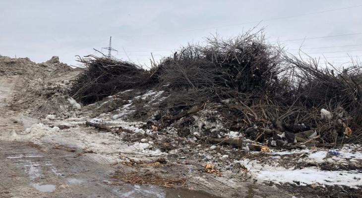 Придётся терпеть: мусорный полигон на окраине Рязани не закроют ещё четыре года