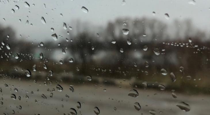 Слякоть и ветер: в Рязани обещают ухудшение погоды
