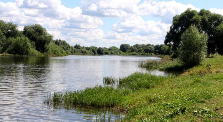 Будут расчищать: на реке Солотча на год закроют пляжи