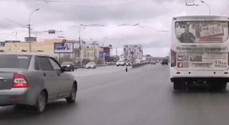 Все обошлось: на Московском шоссе у Лады на ходу отвалилось колесо