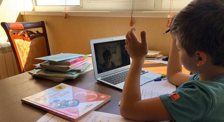 """Незаконная заочка: в Госдуме предложили запретить """"дистанционку"""" в школах"""