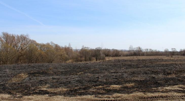 Опять жгут: в Путятинском районе дважды загорелась трава