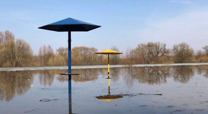 Паводок: в рязанском Лесопарке затопило дорогу