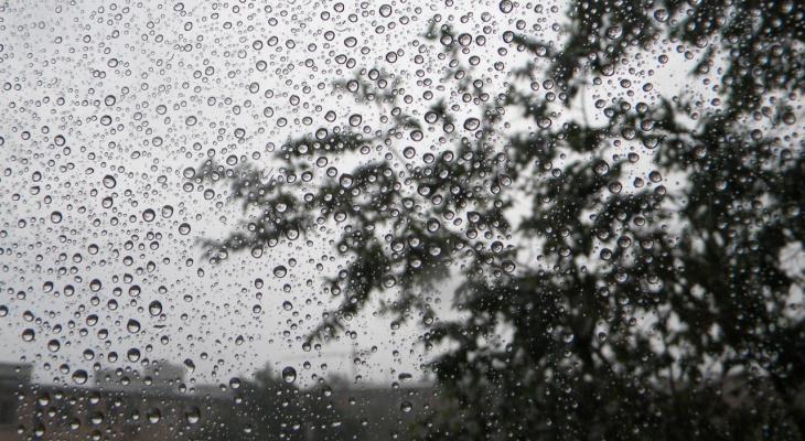 Готовьте зонтики: в пятницу в Рязани ожидается дождь