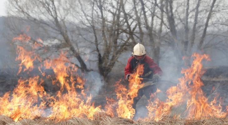 Могли сгореть дома: в Рязанской области из-за замыкания подземного кабеля случился пожар