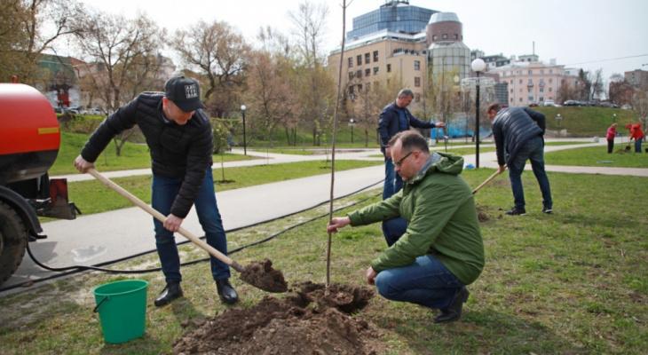 Озеленение: депутаты рязанской думы высадили деревца на Лыбедском бульваре
