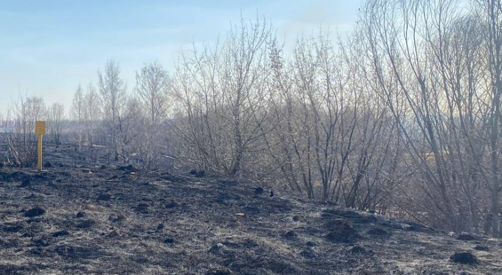 Под Рязанью мужчина спас целое село от участи стать пеплом