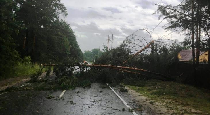Предупреждение от МЧС: хорошей погоды в Рязани пока ждать не стоит