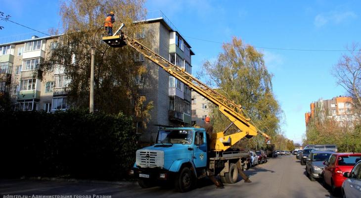 Где в Рязани будут рубить аварийные деревья: список адресов