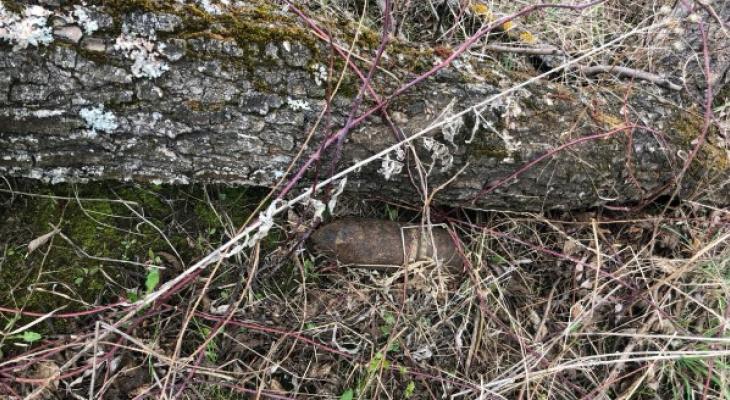 Взорвали на месте: в Рязанском районе нашли 100мм артиллерийский снаряд