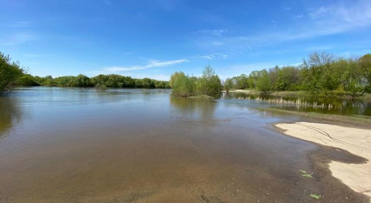 На Оке вновь затопило причал и дорогу у Орешка: из-за дождей?