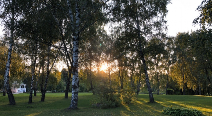 Наконец-то тепло: рязанцев ждёт настоящее лето