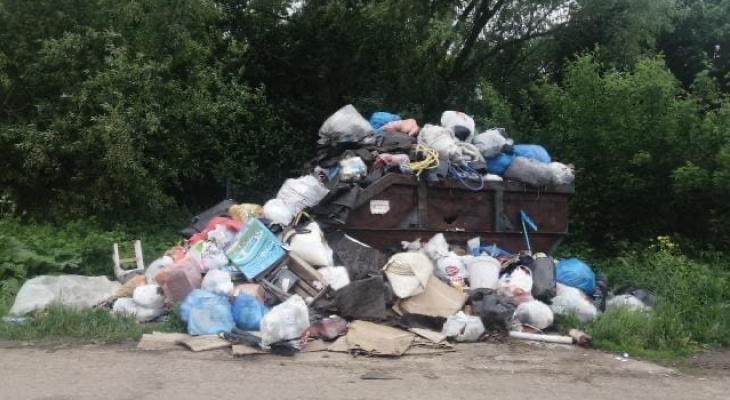 Свалке исполнилось три недели: в деревне под Рязанью перестали вывозить мусор