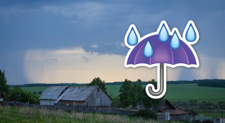 Сплошные дожди: погода в Рязани на выходные
