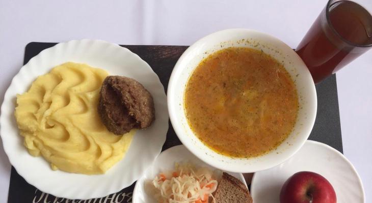 На котлетку с пюрешкой: федералы дадут Рязанской области 2 миллиона на бесплатное горячее питание для школьников