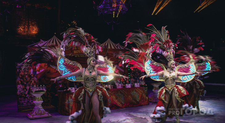 «Эстетика в каждом номере»: в Рязань приехал настоящий королевский цирк!