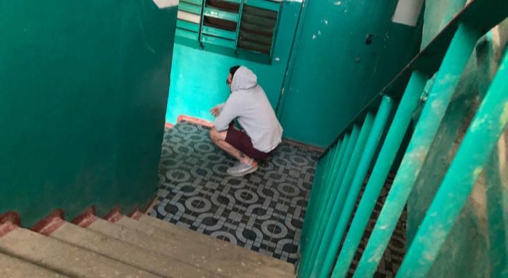 Народный контроль: в Песочне местным жителям не дают спать пьяные дебоширы
