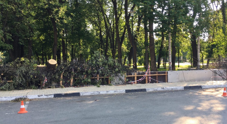 Будет просторно: в Наташкином парке предлагают убрать забор