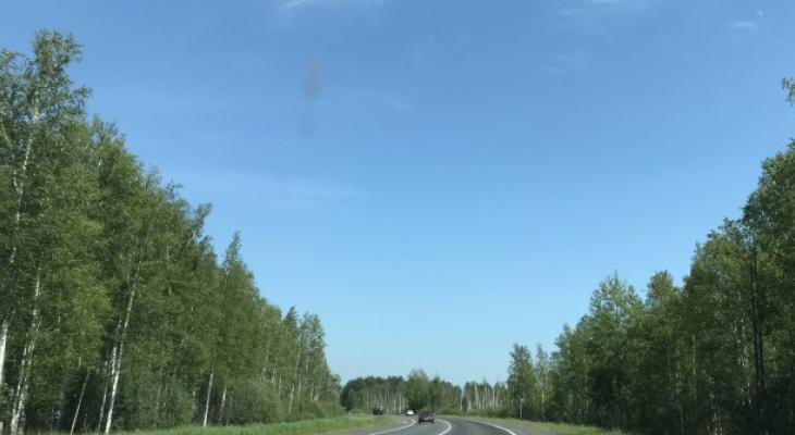 Ничего общего с безопасностью: в России могут увеличить скоростной режим до 150 км/ч