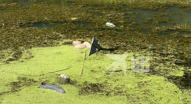 Не для слабонервных: появилось фото мужчин, утонувших в озере в Голенчино