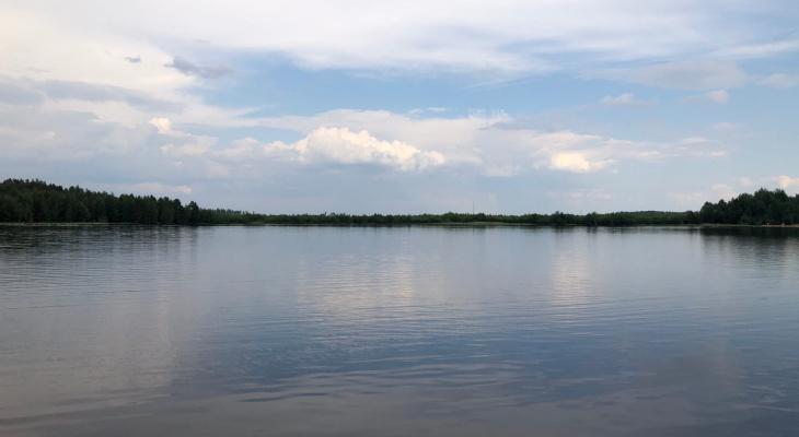 Нарушений не найдено: экоактивисты опубликовали результаты проб реки Старица