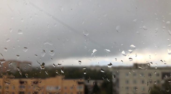 МЧС: в Рязанской области будут грозы и сильный ветер