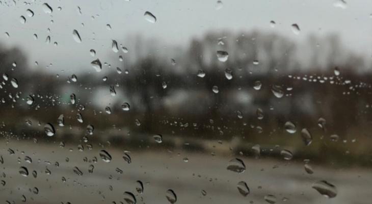 Берите зонт: в Рязани ожидаются дожди и грозы