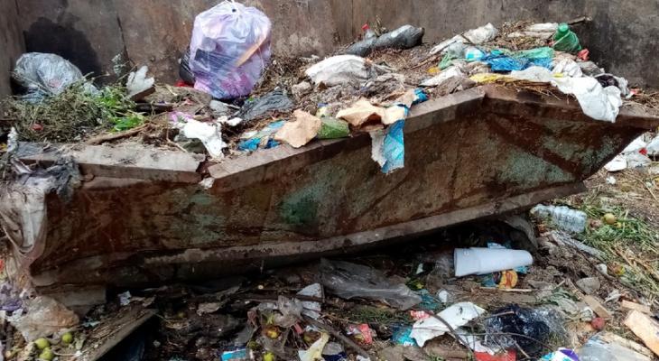 Рязанцы не знают, что делать: в Мирном перестали вывозить мусор
