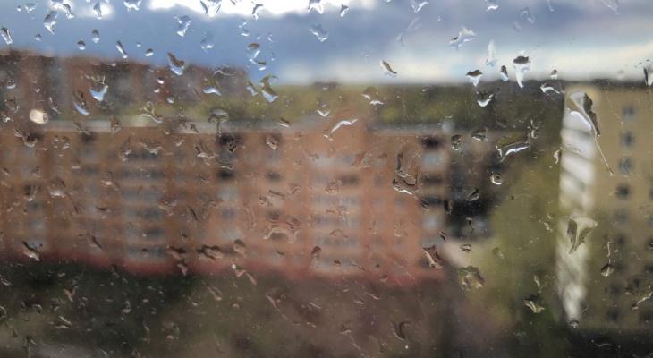 Будет дождь: погода в Рязани на пятницу