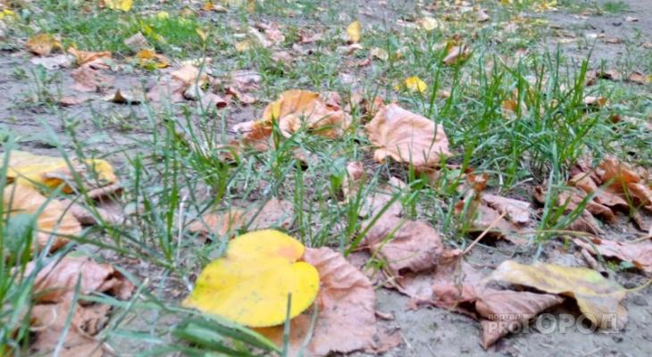 В выходные в Рязань придет тепло