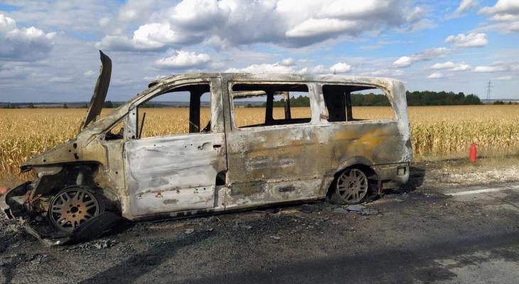 Сами не справились: в Пронском районе сгорел микроавтобус