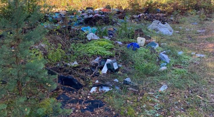 Целый полигон: рязанцы нашли еще одну стихийную свалку под Криушей