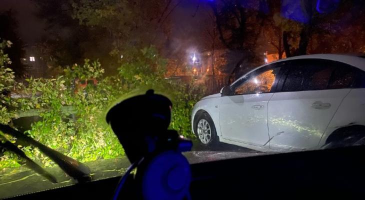 Владельцам - готовить кошельки: в Приокском дерево повредило две машины