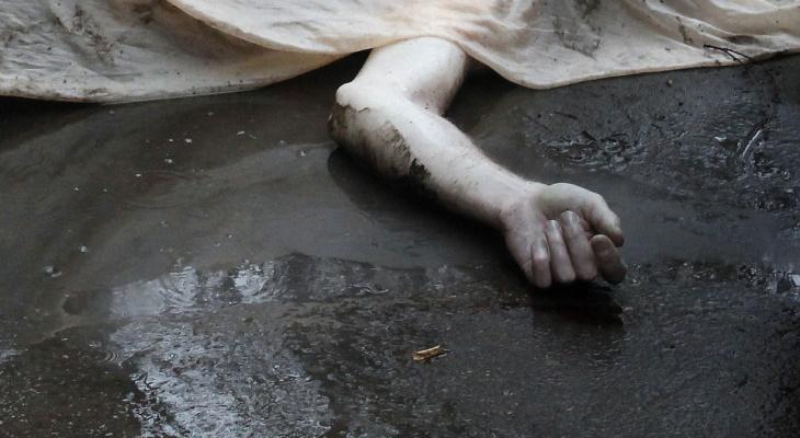Не выдержала: скончавшаяся в Сараевском районе девушка покончила с собой