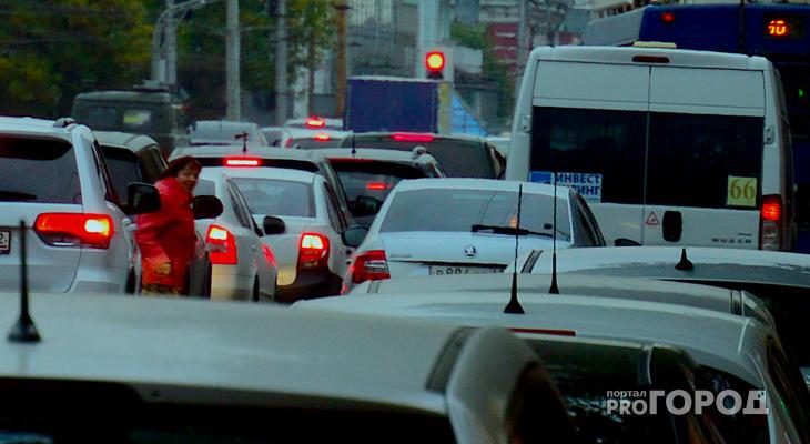 Клан бессмертных: на Первомайском проспекте обитают самые смелые пешеходы Рязани