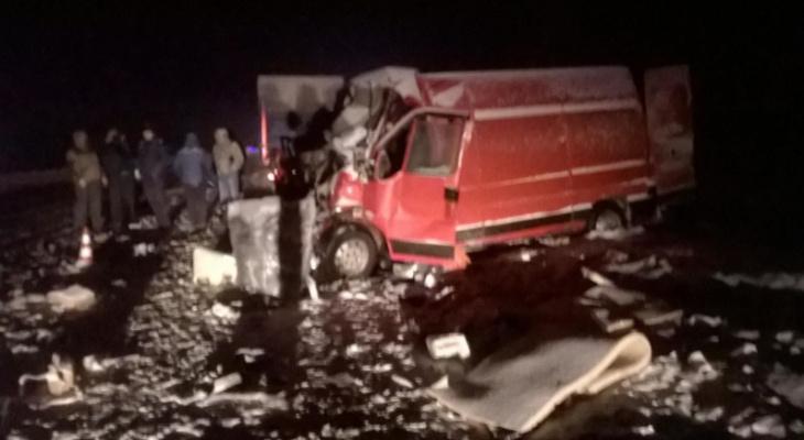 В ДТП на трассе М-5 в Рязанской области погибли 2 человека
